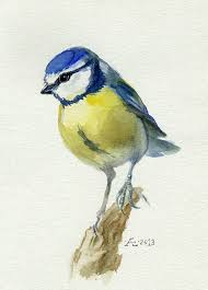 adee 8 bird watercolor painting painting by artist barbara fox