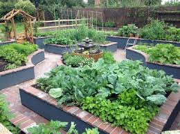 Small Picture Drought Tolerant Plants Landscape Design With Some Small Garden No