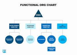 Non Profit Organizational Chart Template New Simplified