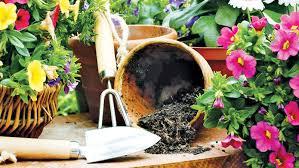 beginner gardening. Beginner Gardening Mistakes To Avoid I