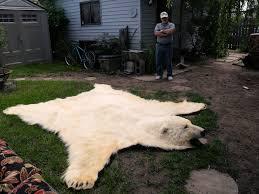 polar bear rug items for