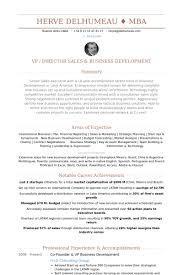 Vp Business Development Resume Samples Visualcv Resume Samples
