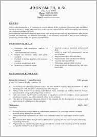 Profile Part Of A Resume Example Best Resume Examples Beautiful
