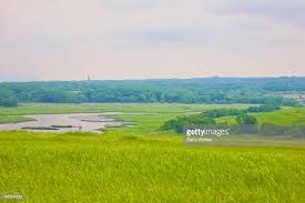 grass field from above. Grass Field From Above. Upland Grasses Above Meandering Water : Stock Photo Grass  Field From Above