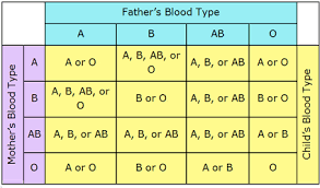 parent blood types chart blood type chart parents oyle kalakaari co