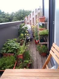 garden landscaping: Charming Green Plants Completinf Minimalist Designed Small  Balcony Garden On Wooden Flooring Decoated