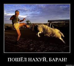 Порошенко создал рабочую группу по возвращению в Украину активов режима Януковича - Цензор.НЕТ 2642