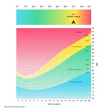 When Was The Bmi Chart Invented Ideal Weight Chart Metric