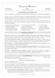 Security Executive Resume Sample Director Of Security Resume Examples Examples of Resumes 1