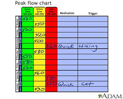 Peak Flow Metre Chart Record Results On The Peak Flow Meter Chart Infobarrel Images