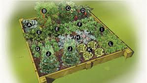 Small Picture Summer Vegetable Garden Plan
