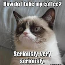 ANIMALS - Grumpy Cat on Pinterest | Grumpy Cat, Grumpy Cat Meme ... via Relatably.com