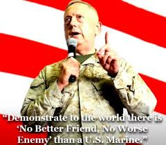 Mattis Quotes Enchanting 48 Best General James Mad Dog Mattis Quotes