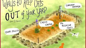 keep rats out of garden awesome getting rats out of yard rat terrier garden statue keep rats out of garden rats in