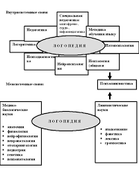 Пятница Т В Логопедия в таблицах и схемах Минск Аверсэв  Связь логопедии с другими науками