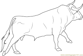 Small Picture Spanish Fighting Bull Coloring Page Free Bull Coloring Pages