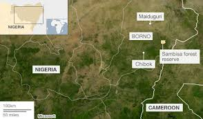 Image result for sambisa forest