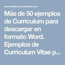 Ejemplo De Curriculum Vitae En Word
