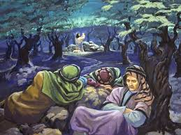 christ in the garden of gethsemane. The Disciples Sleep As Jesus Prays ( Picture From Biblessonsite.org ) Christ In Garden Of Gethsemane H