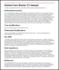 examples of work experience on a resume animal care worker cv sample myperfectcv