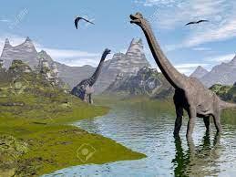 Dinosaurios Braquiosaurio Caminar En Agua Paisaje De Un Hermoso Día Fotos,  Retratos, Imágenes Y Fotografía De Archivo Libres De Derecho. Image  27013905.