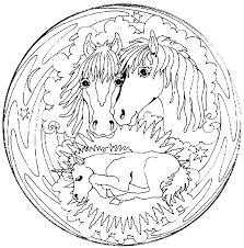 Mandala Paarden Met Veulen Kleurplaat Jouwkleurplaten