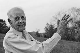 wendell berry on racism wendell berry