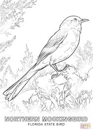 Small Picture Coloring Pages Animals Dodo Bird Coloring Page Bird Coloring