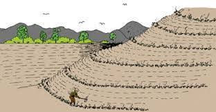 soil erosion  causes and prevention    follow green livinglack of forest cover is largely responsible for erosion of soil