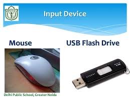 Delhi Public School Greater Noida Input Devices 24