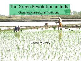the green revolution in  the green revolution in changing agricultural traditions
