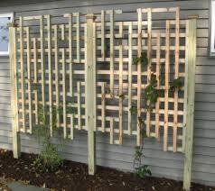 Modern garden trellis panels