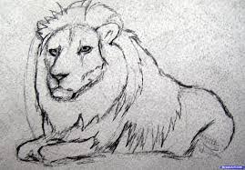 realistic animals to draw. Unique Realistic Realistic Animals To Draw  Photo4 Intended Animals To Draw