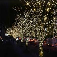 Wedding Tree Lights Details About Solar Powered 100 Leds 55ft String Fairy Christmas Tree Light Wedding Party Xmas