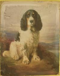 vintage oil painting print dog spaniel on canvas