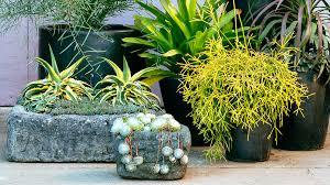 10 Wonderful And Cheap DIY Idea For Your Garden 7  Succulent Succulent Container Garden Plans