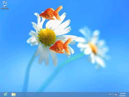 free live wallpaper for pc windows 8. google nexus one live wallpaper for windows 7 · fish wallpaperfree desktop free pc 8 v