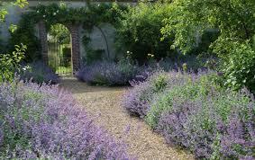 best gravel for your garden