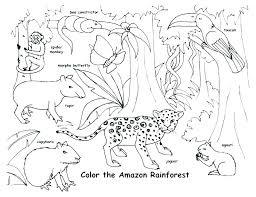 Coloring Pages Forest Animals Winter Animals Coloring Pages Winter Animals Coloring Pages Winter