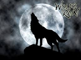 black wolf howling wallpaper. Interesting Wolf Images For U003e White Wolf Howling At Full Moon In Black Wallpaper