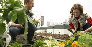 how to grow a herb garden. How To Grow A Herb Garden Outdoors