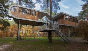 back view of modern tree house with beautiful and elegant interior