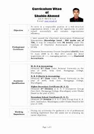 Sample Resume Format For Experienced It Professionals Fresh