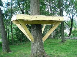 treehouse furniture ideas. Full Size Of Tree House Ideas Adorable Pallet Plans To Live In Best Of  Simple Treehouse Treehouse Furniture Ideas