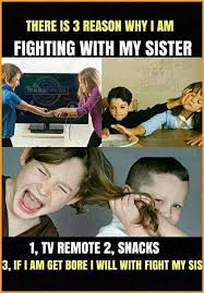 Funny Sibling Quotes Delectable Top 48 Funny Sibling Quotes Quotes And Humor
