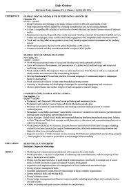 Digital Media Resume Corol Lyfeline Co Professional Resumes Planner ...