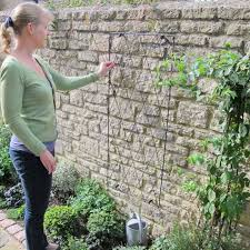 so which plants are best to grow up a metal garden trellis there are many types of climbing plants to choose from and your choice might be dependent upon