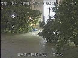 二子 玉川 氾濫