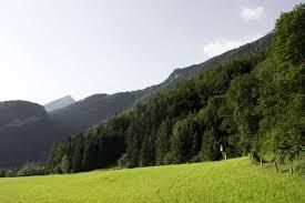 524544 austrian mountain, green ...