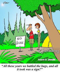 Image result for camping cartoons funny